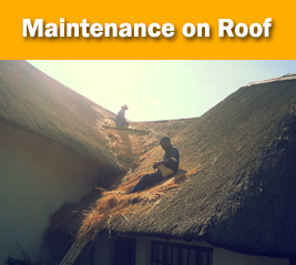 Pretoria Inry Pale And Top Thatch Supply Services For
